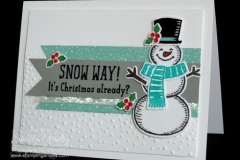 Stampin-Up-Snow-Place-Stamp-Set